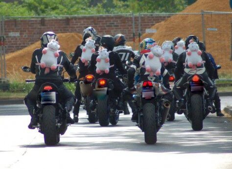 Bilderparade CDLIII LangweileDich.net_Bilderparade_CDLIII_01