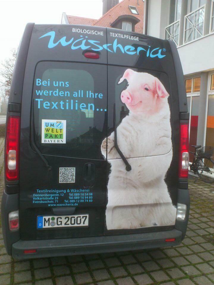 Bilderparade CDXXIX LangweileDich.net_Bilderparade_CDXXIX_62