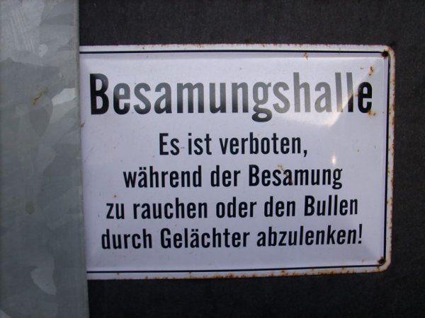 Bilderparade CDXXIX LangweileDich.net_Bilderparade_CDXXIX_68