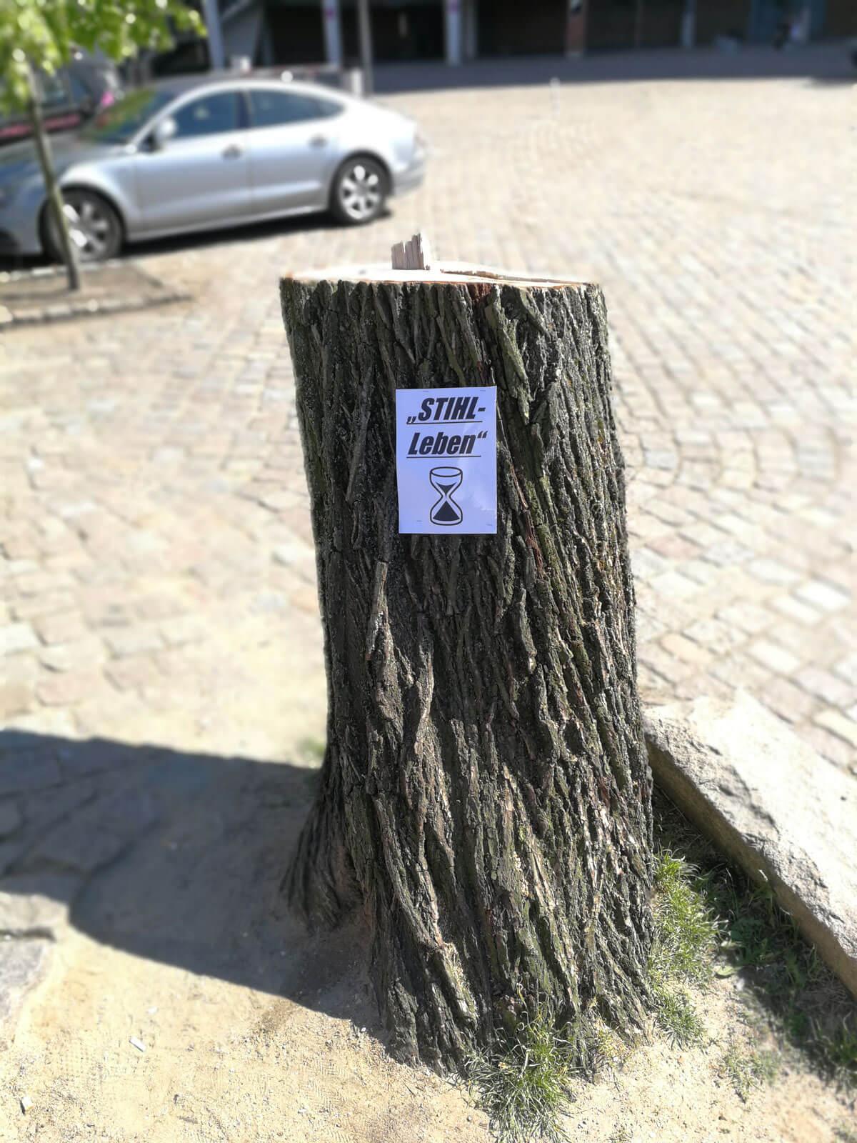Bilderparade DXXXIX LangweileDich.net_Bilderparade_DXXXIX_89